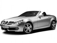 Коврики из экокожи 3D  Mercedes SLK-класс R171 2004 - 2011